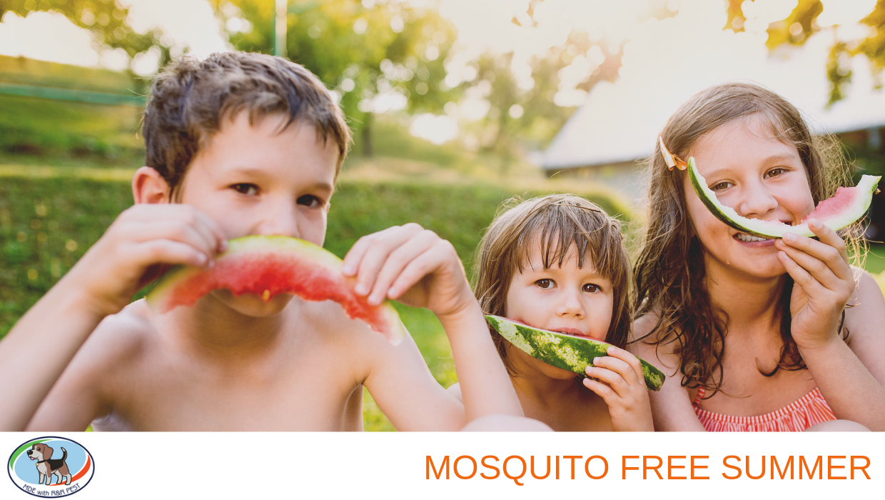 Mosquito Free Summer
