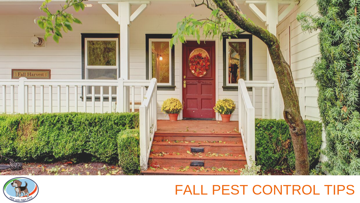 Upstate Pest Control Fall Tips