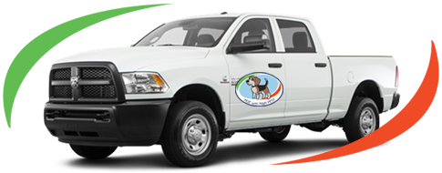 Pest Control Services Spartanburg